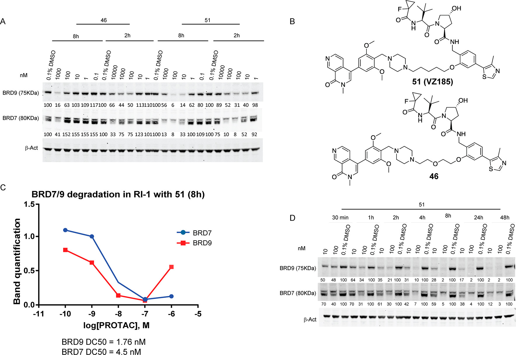 Figure 8. VZ185 induces strong and rapid degradation in a time- and dose-dependent manner.