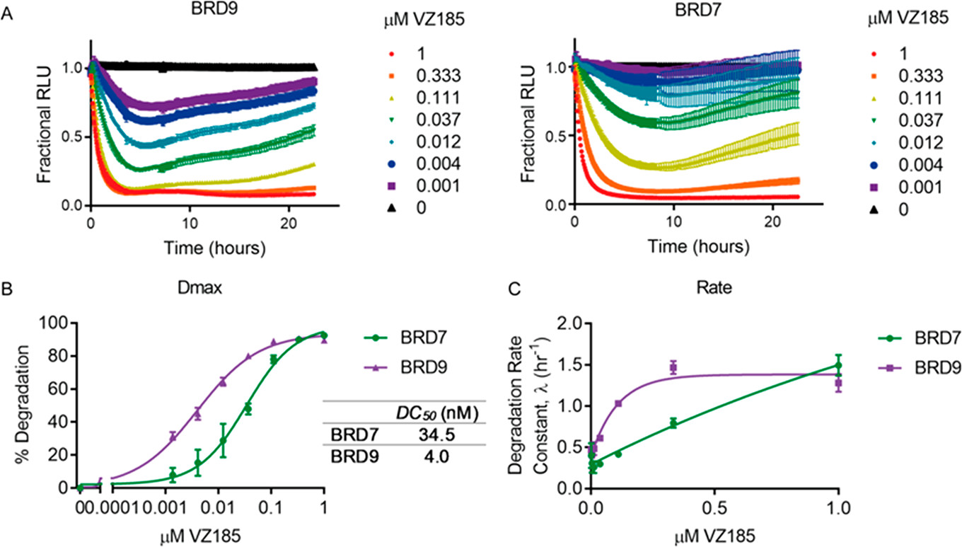 Figure 9. Quantitative live-cell kinetics of VZ185 induced degradation of BRD7 and BRD9.