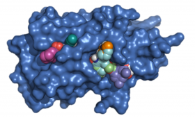 Allosteric targeting of E2 conjugating enzymes