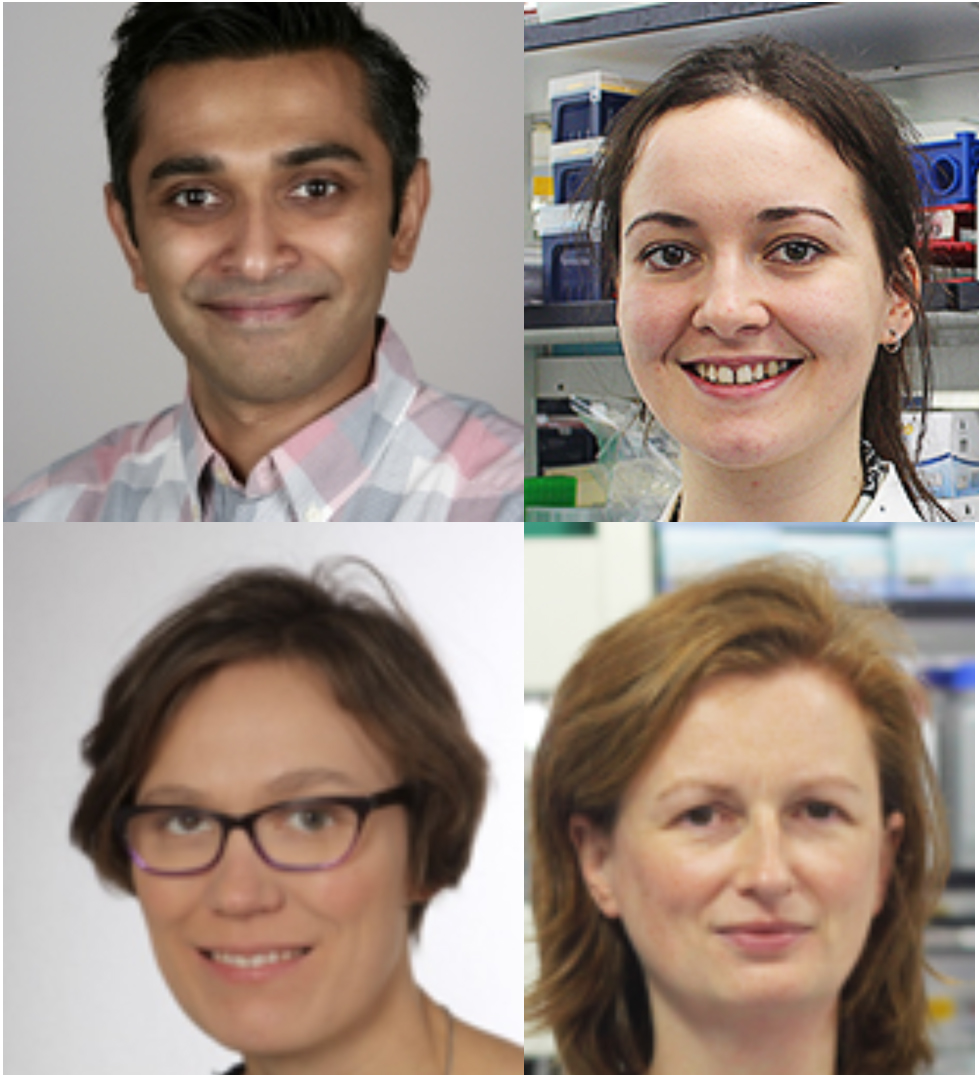 Image (clockwise from top left): Dhaval Varshney, Olivia Lombardi, Victoria Cowling, Gabriele Schweikert.