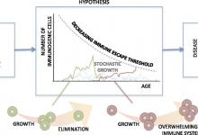 Figure 1: Declining T cell production leads to increasing disease incidence.
