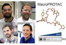 Clockwise from top left: Dr Andrea Testa, Dr Scott Hughes, Dr Jane Wright &  Dr Xavier Lucas with macroPROTAC