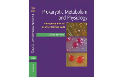 Prokaryotic Metabolism and Physiology book cover