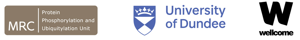 MRCPPU, UoD and Wellcome logos